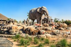 野生动物中央雕塑在迪拜徒步旅行队公园 免版税图库摄影