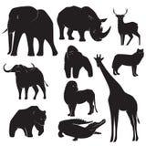 野生动物剪影的汇集 库存例证