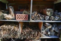 野生动物和昆虫房子的一个庭院风雨棚 库存图片