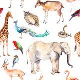 野生动物和鸟-动物园,野生生物-大象,长颈鹿,鹿,猫头鹰,鹦鹉,其他 无缝的模式 水彩 向量例证