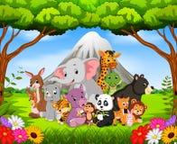 野生动物在密林 库存例证
