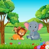 野生动物在森林里 库存图片