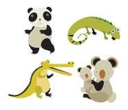 野生动物 库存图片