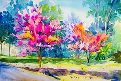 野生喜马拉雅樱桃抽象绘画水彩原物开花 免版税库存照片