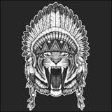 野生头戴与羽毛Boho别致的样式手拉的图象的老虎凉快的动物当地美洲印第安人头饰为 库存照片