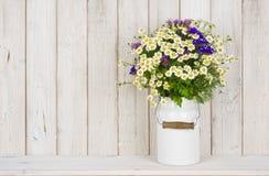 野生春黄菊开花在桌上的花束在木板条背景 免版税库存图片