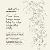 野生植物花和竹子。 皇族释放例证