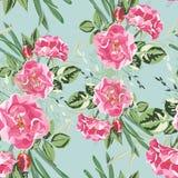 野生玫瑰的无缝的样式 开花的玫瑰和绿叶葡萄酒花束  向量例证
