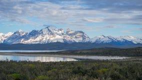 野生生物和自然在Parque托里斯del潘恩,智利,巴塔哥尼亚 免版税库存照片