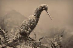 野生生物场面-野生生物场面 库存照片