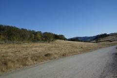 野生生物徒步旅行队公园,俄勒冈 免版税库存照片