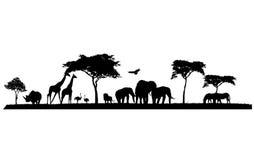 野生生物徒步旅行队剪影  免版税库存图片