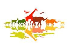 野生生物徒步旅行队 免版税库存图片
