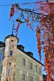 野生藤和一个房子门面与壁画 St Gilgen,奥地利,欧洲 免版税图库摄影