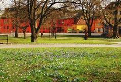 野花和五颜六色的大厦乌普萨拉,瑞典 免版税库存图片