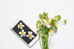 野花和在白色背景隔绝的智能手机装饰 图库摄影