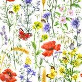 野花和昆虫样式 免版税图库摄影