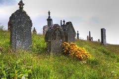 野花在一个老坟园在苏格兰 免版税图库摄影