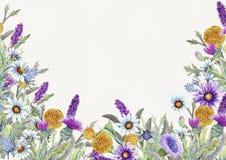 野花婚姻的圆的框架  水彩 花的布置 贺卡模板设计 邀请 免版税库存图片