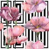 野花桃红色胡麻 花卉植物的花 无缝的背景模式 免版税图库摄影