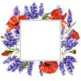 野花淡紫色在水彩样式的花框架被隔绝的 免版税库存照片