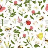 野花的传染媒介无缝的样式,蜂,土蜂,蜻蜓,瓢虫,飞蛾,蝴蝶 库存例证
