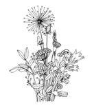 野花的剪影在白色背景的 库存照片