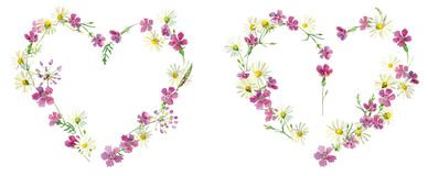野花的心脏为情人节 向量例证