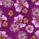 野花的无缝的重复的样式 免版税库存图片