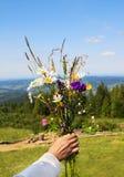 野花花束在妇女的手上在山背景 免版税库存图片