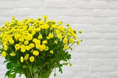 野花黄色明亮的花束在花瓶的 免版税库存照片
