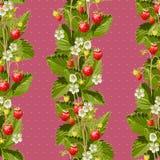 野草莓无缝的背景 免版税库存照片