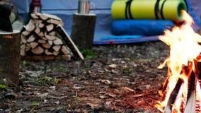 野营与火 股票视频