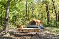 野营在国家公园的秋天 库存照片