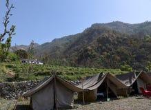 野营在山的密林 免版税库存照片