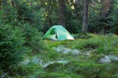 野营在挪威的原野日出的 库存照片
