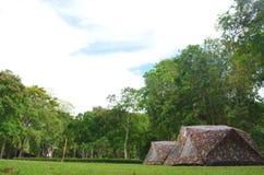 野营在草的帐篷 免版税库存图片