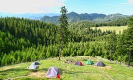 野营有美丽的景色的森林 库存图片