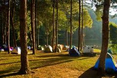 野营的公园 免版税库存图片
