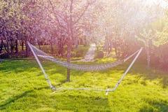野营的关闭的柳条吊床-在开花的春天庭院背景在一个晴天 定调子 免版税库存照片