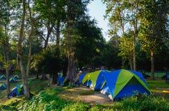 野营的帐篷在国家公园 库存照片