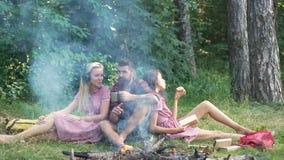野营的朋友吃食物概念 阵营森林冒险旅行遥控放松概念 有的青年人野营 影视素材
