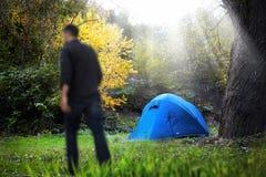 野营的森林 免版税库存照片