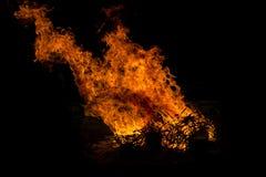 野营的火火焰森林 免版税图库摄影