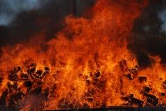 野营的火火焰森林 免版税库存照片