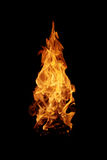 野营的火火焰森林 库存照片