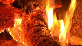 野营的火燃烧木柴篝火火焰的关闭  影视素材