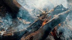 野营的火,超级慢动作燃烧木柴篝火火焰的关闭  影视素材