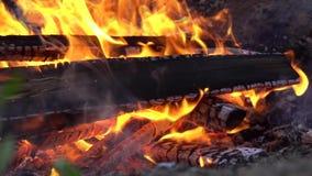 野营的火,超级慢动作燃烧木柴篝火火焰的关闭  股票录像