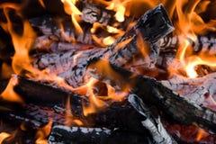 野营的篝火 免版税库存照片